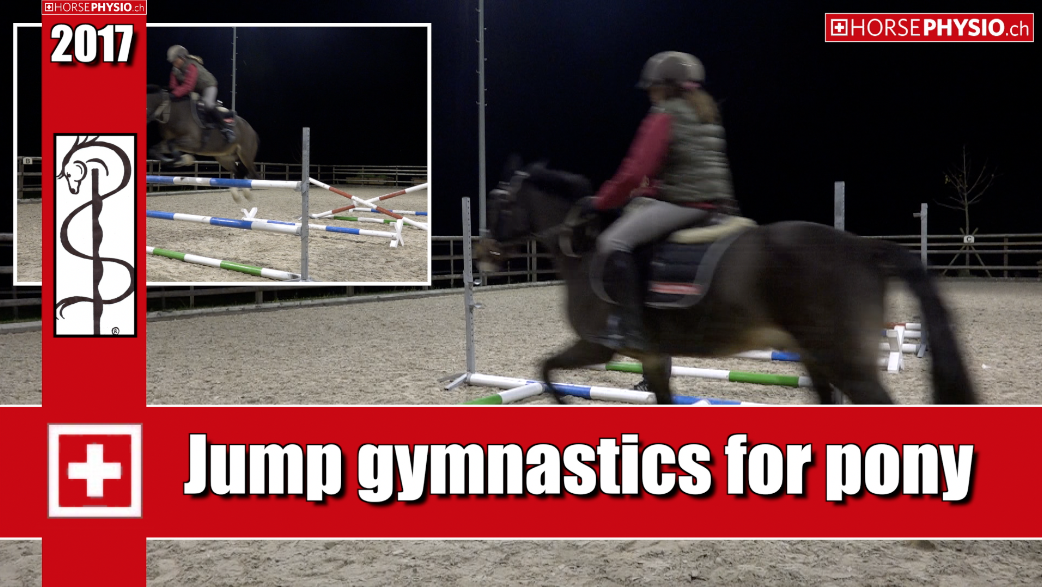 jump gymnastics for Pony
